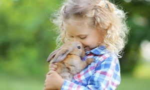 east-end-vets-love-rabbits