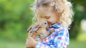 passionate-about-rabbits-slider